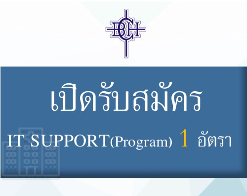 IT SUPPORT (Program)